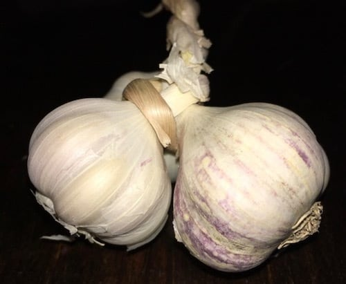 garlic from the Panajachel market